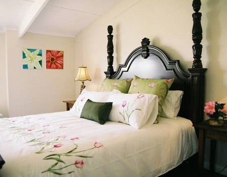 Springfield Guest Cottages - Grafton Accommodation