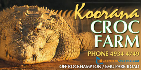 Koorana Saltwater Crocodile Farm - Grafton Accommodation