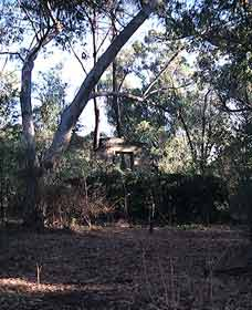 Ghost House Walk Trail Yanchep National Park - Grafton Accommodation