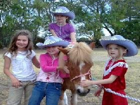 Amberainbow Pony Rides - Grafton Accommodation