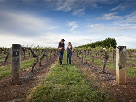 Coonawarra Wineries Walking Trail - Grafton Accommodation