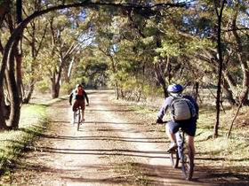 Bike About Mountain Bike Tours And Hire - Grafton Accommodation