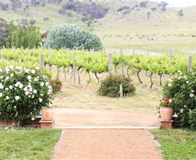 Brindabella Hills Winery - Grafton Accommodation