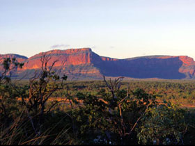 Blackdown Tableland National Park - Grafton Accommodation