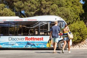 Rottnest Island Tour from Perth or Fremantle including Bus Tour - Grafton Accommodation