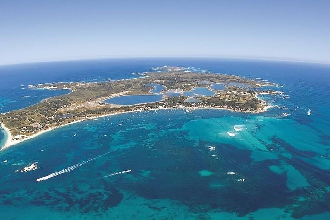 Rottnest Island ECO E Bike Tour - Grafton Accommodation