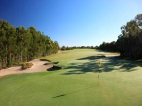 Pelican Waters Golf Club - Grafton Accommodation