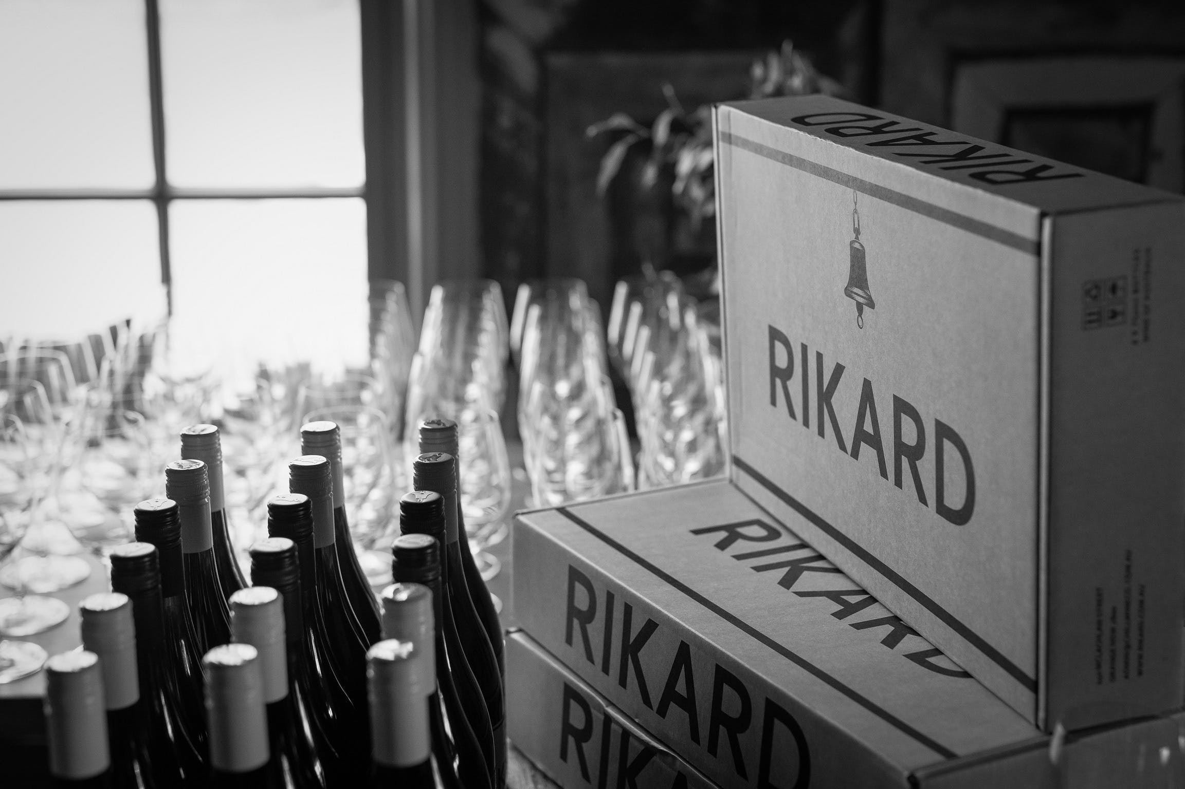 Vin Vertical - Five Years of RIKARD Pinot Noir - Grafton Accommodation
