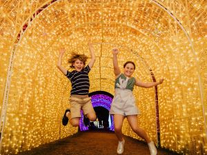 Christmas Lights Spectacular New Year's Eve at Hunter Valley Gardens - Grafton Accommodation