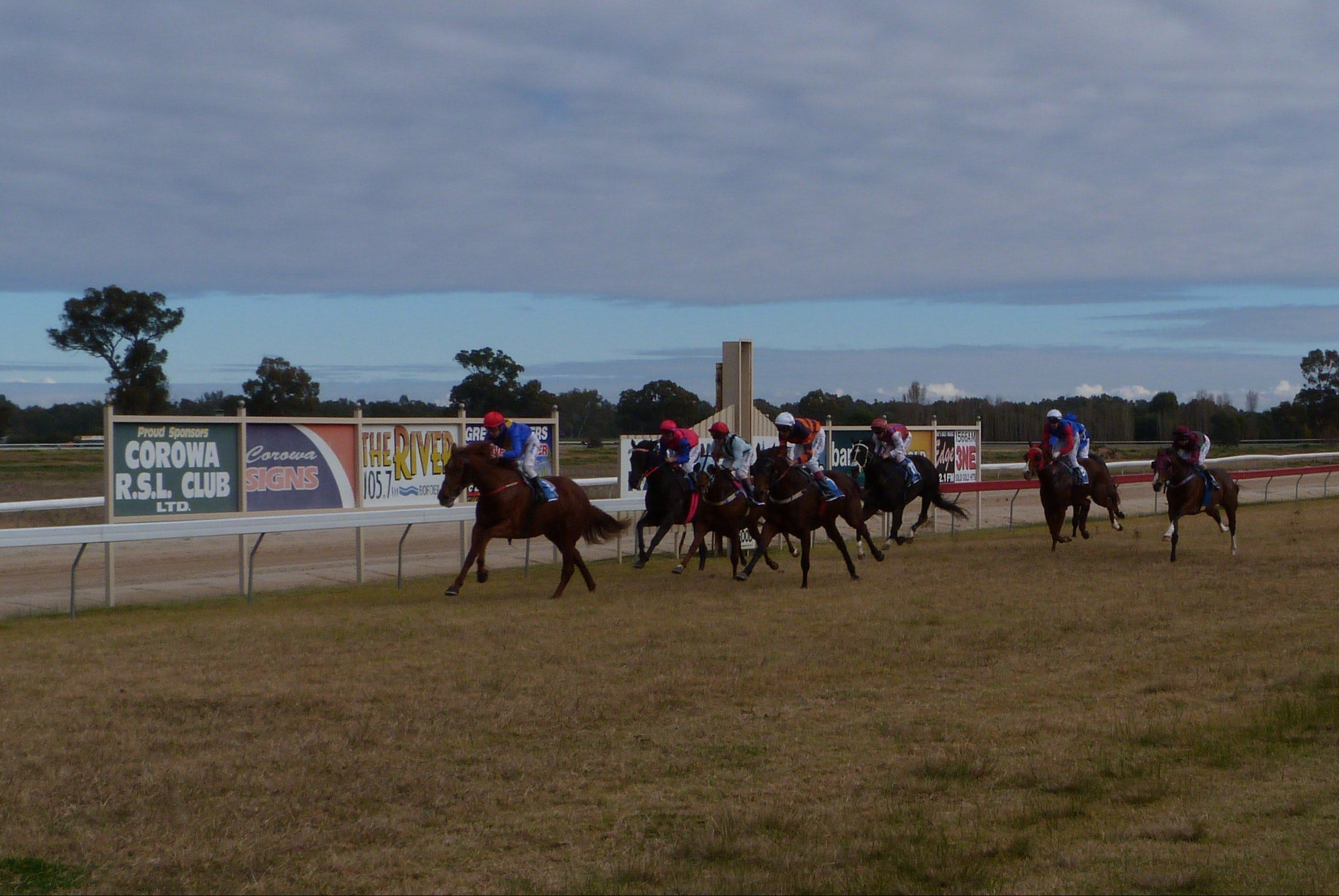 Corowa Horseraces - Grafton Accommodation