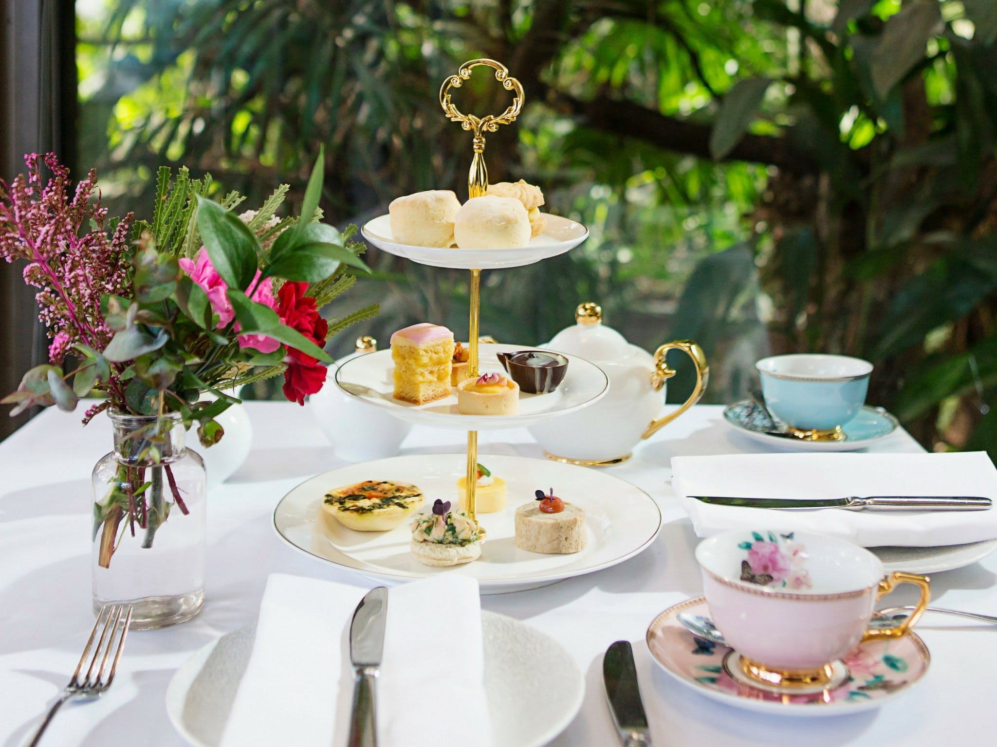 High Tea at Melbourne Zoo - Grafton Accommodation