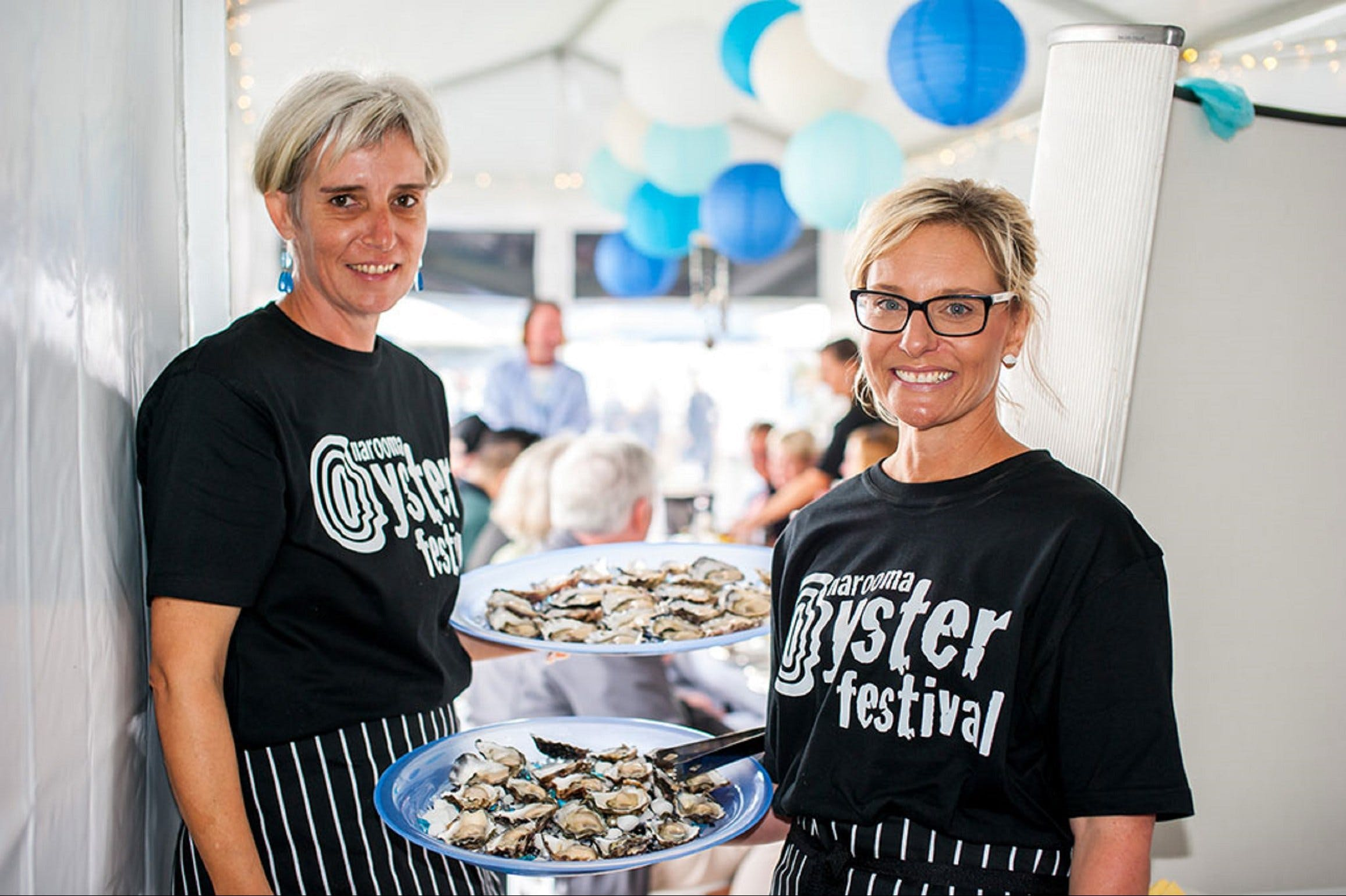 Narooma Oyster Festival - Grafton Accommodation